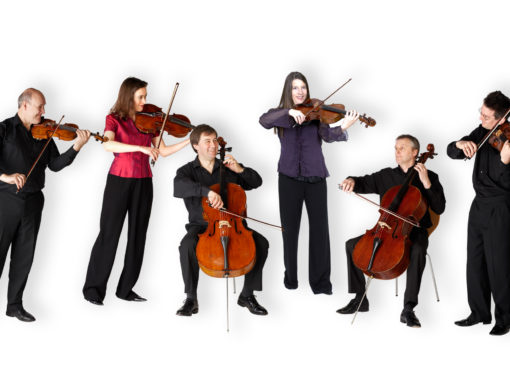 THE PRIMAVERA CHAMBER ENSEMBLE